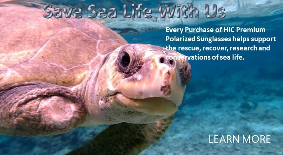 SAve sea life with Hawaiian Island Creations
